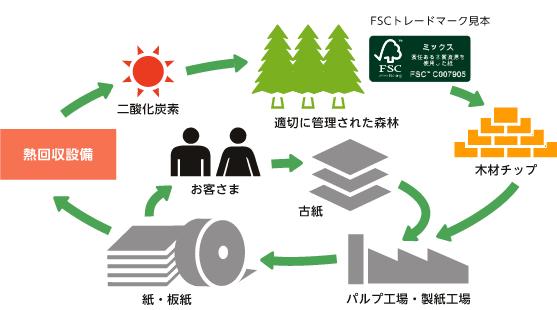 chứng nhận FSC, tư vấn FSC, FSC, quản lý rừng FSC