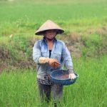 an toàn lao động ngành nông nghiệp